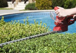 Beginner's Guide to Buying Hedging Trimmers