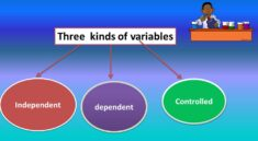 what are the 3 variables in a science experiment